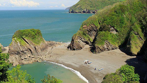 Top Dog-Friendly Beaches in North Devon
