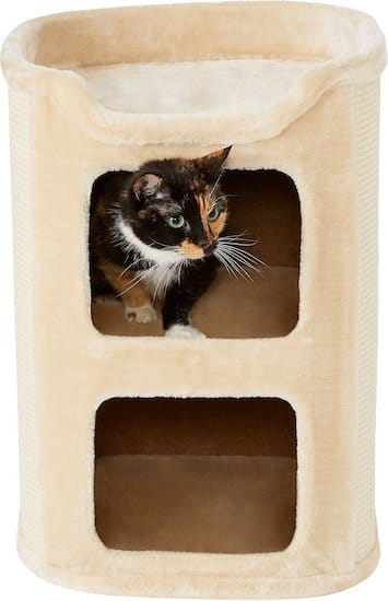 Cat Beds From Caves To Perches The Best Cat Beds For Your Kitty