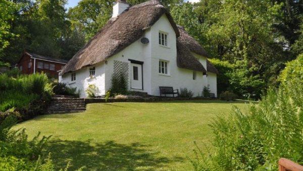 Top 7 Dog-Friendly Cottages in Devon