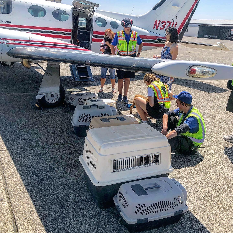 loading-plane.jpg