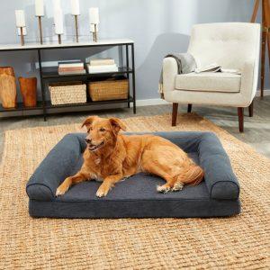 dog lying on Furhaven cheap gel foam sofa-style dog bed