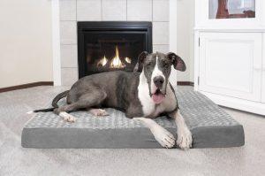 Furhaven deluxe orthopedic dog bed
