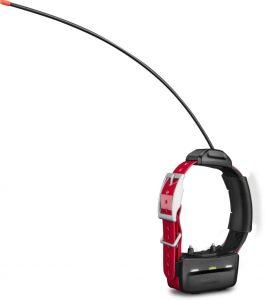 Garmin TT 15 dog GPS collar