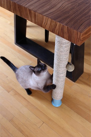 Under-table scratching post