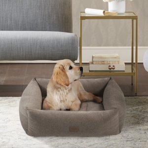 Wayfair Martha Stewart bolster cheap dog bed