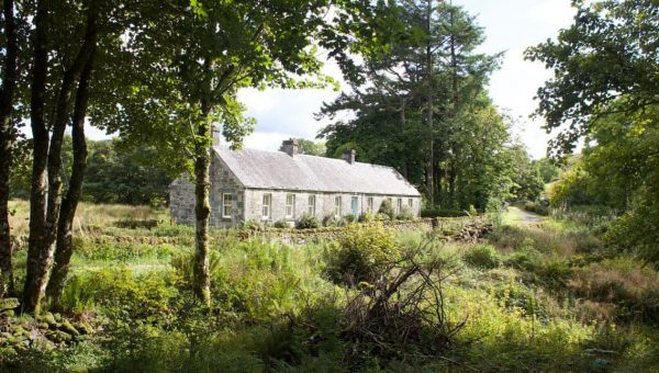Top Dog-Friendly Cottages in Scotland