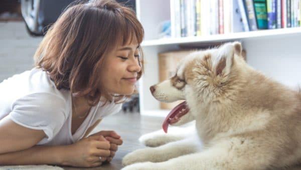 """Åtta sätt att säga """"Jag älskar dig"""" på hundspråk"""