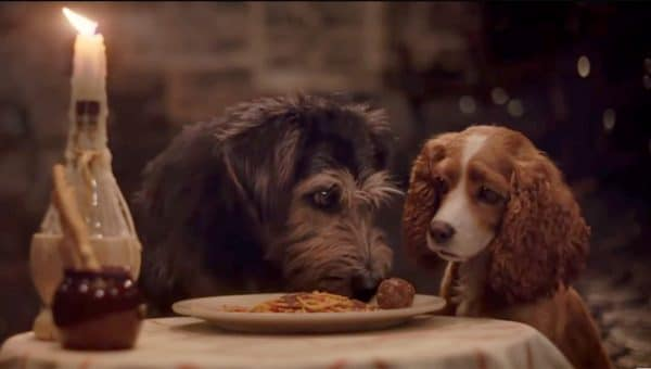 Disney's Live-Action Lady and the Tramp is Almost Here!