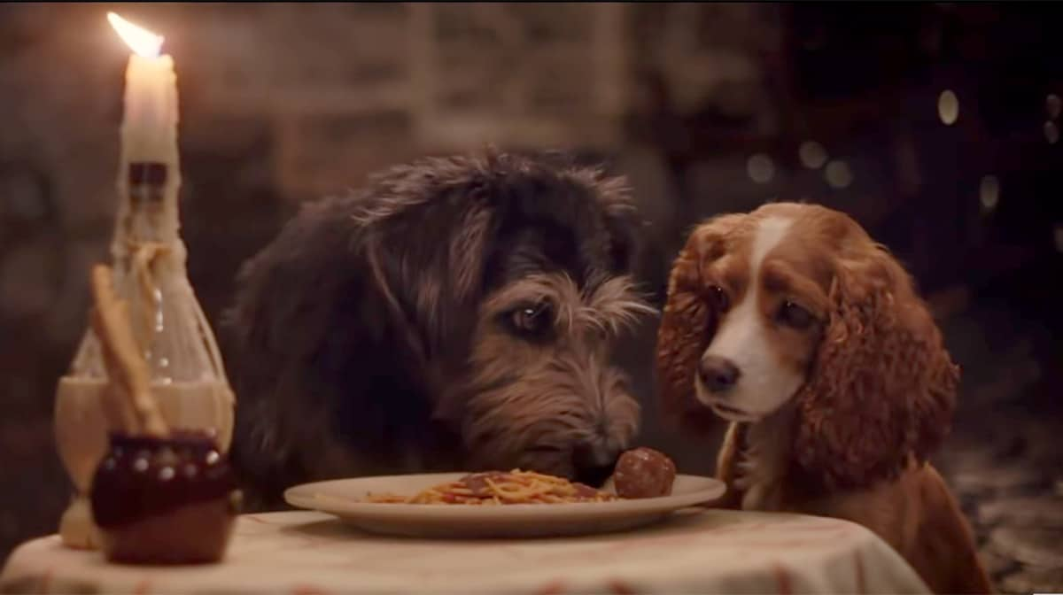 Disney's Live-Action Lady and the Tramp Features an All-Rescue Cast of Dogs