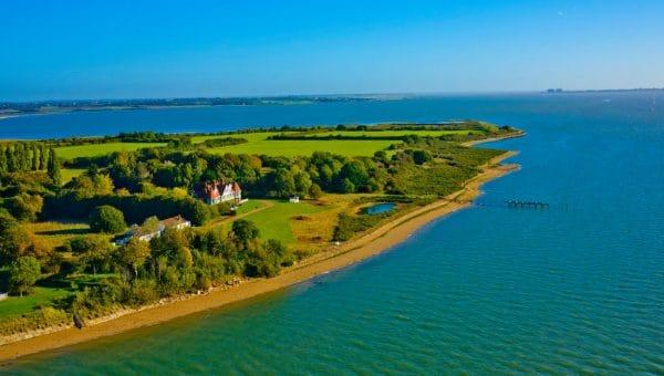 Top Dog-Friendly Beaches in Essex