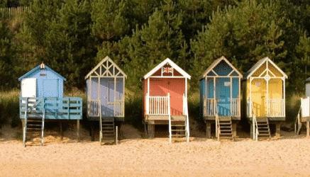 Top 8 Dog-Friendly Beaches in Norfolk