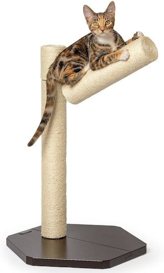 scratching post with branch