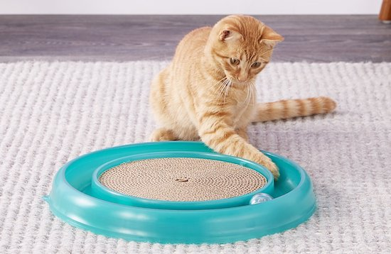 turbo scratcher toy