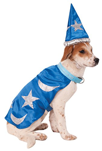 easy wizard dog costume