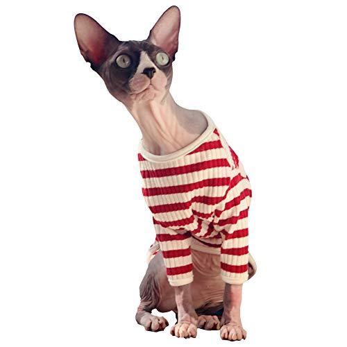 red and cream striped fisherman's shirt on hairless cat