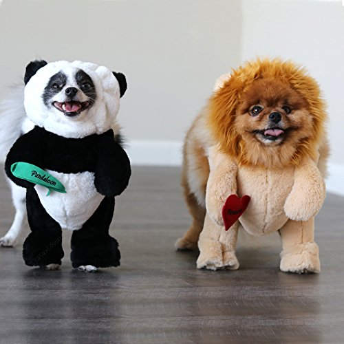 47 Dog Halloween Costumes For 2019 A Real Guide For Real Dog People