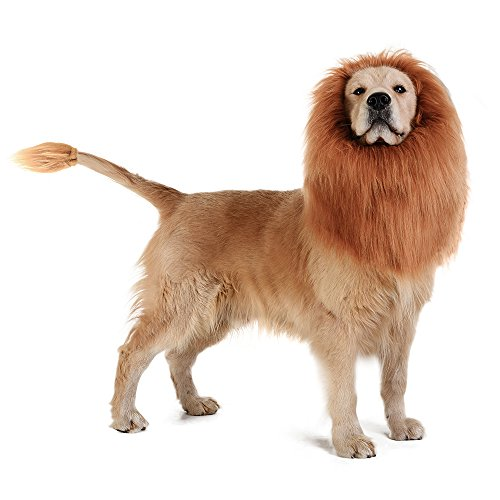 dog wearing realistic mane and tail
