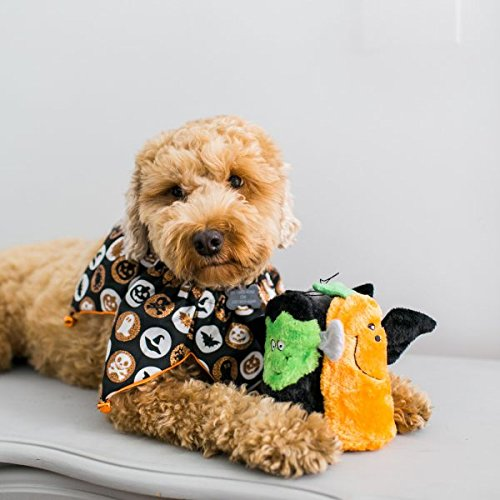 dog with Halloween squeaky toys