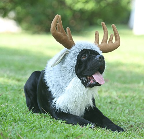 47 Dog Halloween Costumes For 2019 A Real Guide For Real