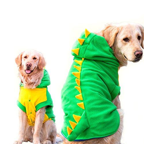 dog wearing dino sweatshirt