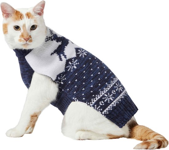 cat in gray and white Fair Isle sweater