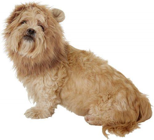 Frisco lion dog costume