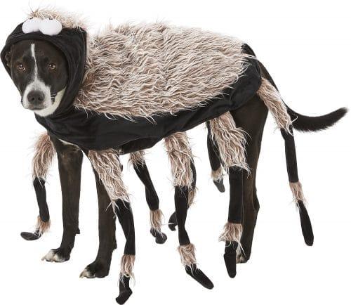 Frisco tarantula costume for dogs