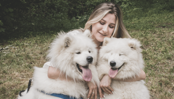 The Best Dog Mom Clothing: Pet Hair Resistant, Claw Proof, and More