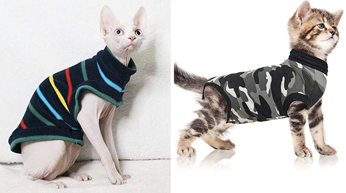 16 Slightly Outrageous Cat Sweaters for Hairless Breeds and