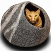 A cat in a round cozy cave cat bed