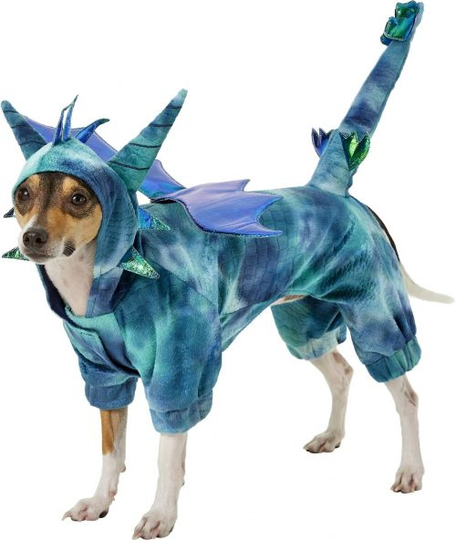 Top 8 Dragon Dog Costumes