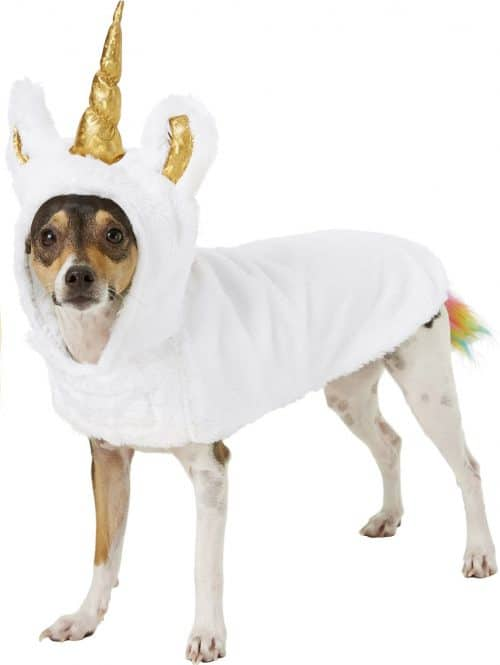 Top 14 Unicorn Costumes For Dogs