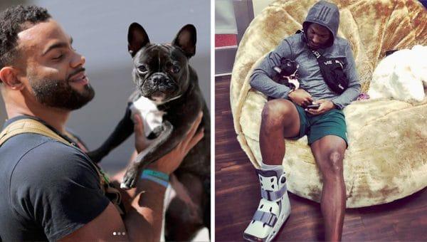 Meet the San Francisco 49er's Secret Weapon—a  French Bulldog