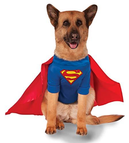 Superdog last-minute costume
