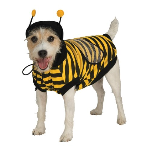 dog in bumble bee hoodie costume