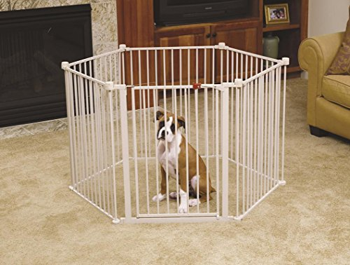 Boxer puppy in white puppy play pen