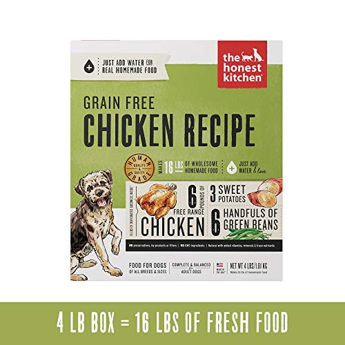 Box of Honest Kitchen dehydrated dog food