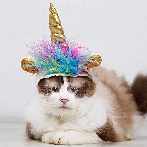 cat in unicorn hat
