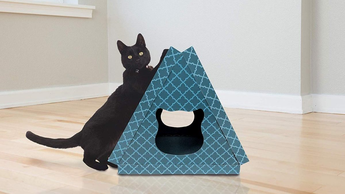 cat scratching on cardboard house
