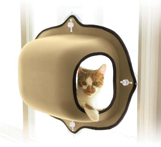 cat inside Cat Bubble window mount