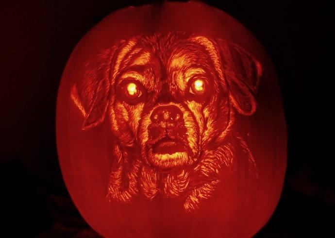 Pompoenlantaarn hond Belle door Andy Manoloff