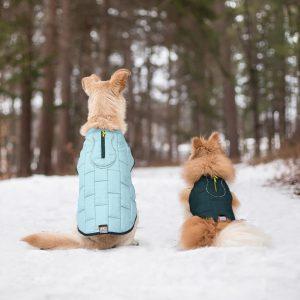 two dogs wearing Kurgo Loft reversible vest in snow