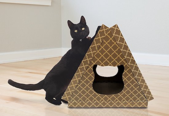 Tiger Tent cardboard cat house