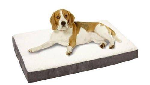cama ortopedica perros