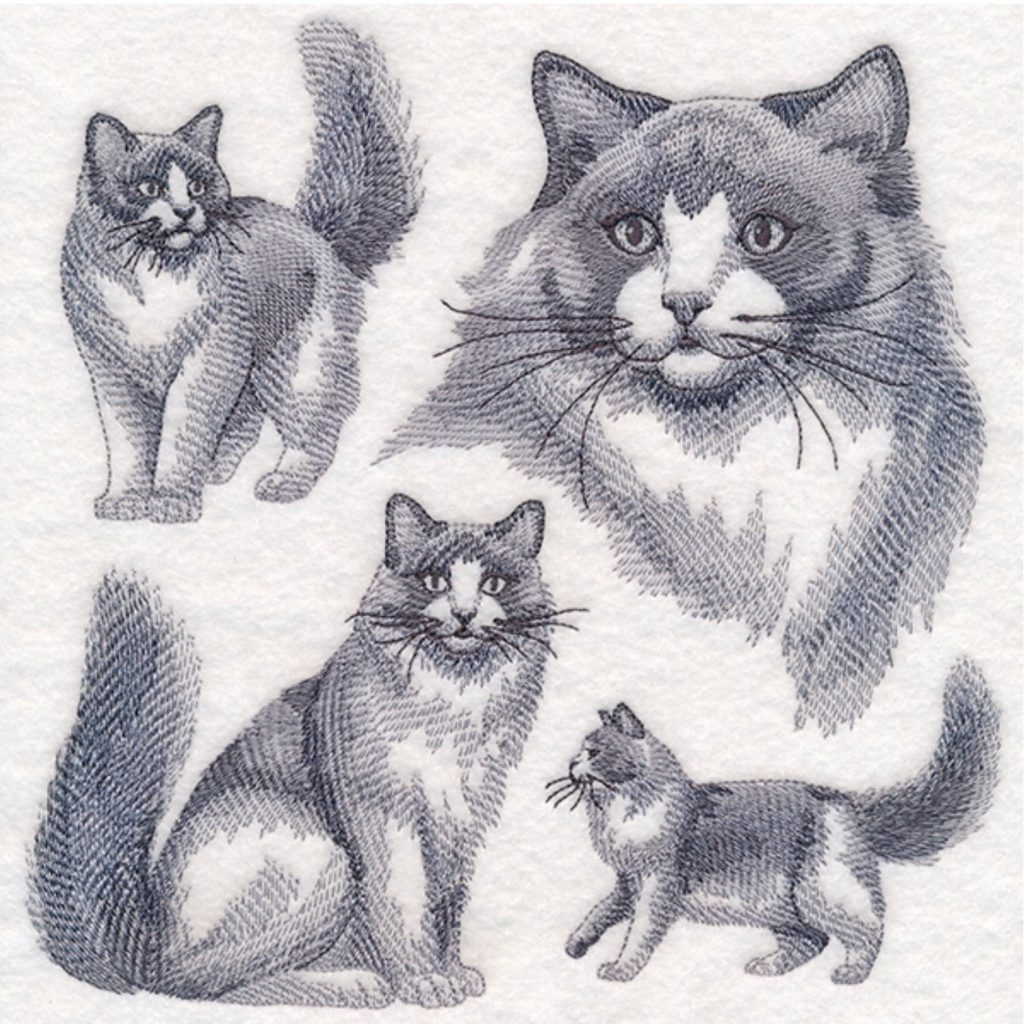 close-up of cat embroidery