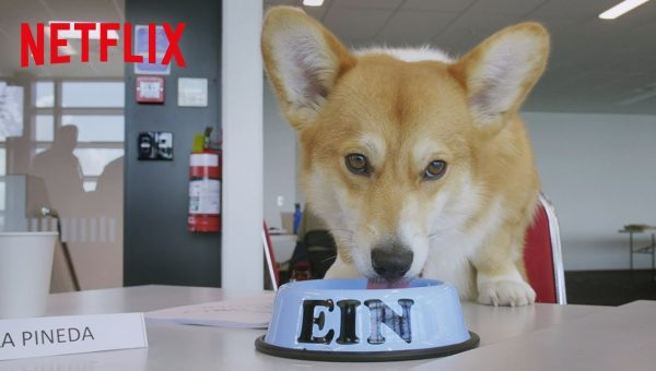 Netflix Introduces Corgi Starring as Ein in Live-Action Cowboy Bebop Remake [Video]