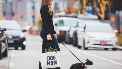 """A woman walks her dog with a tote reading, """"dog mom"""""""
