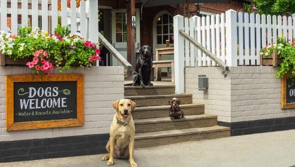 Meet the Judges for the 2019 Rover Dog-friendly Pub Awards: Lisa Hens