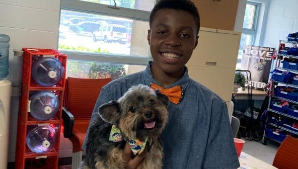Young Entrepreneur Creates Bow Ties for Shelter Dogs to Help Them Get Adopted