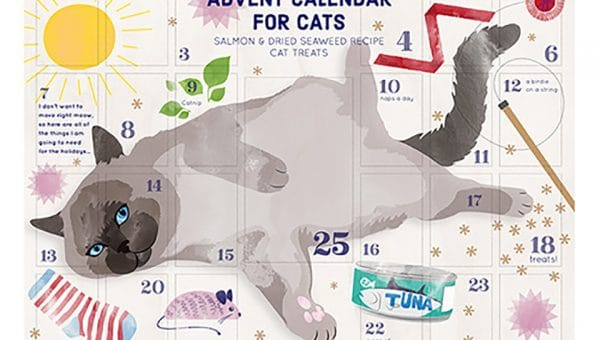 It's Here! Trader Joe's Advent Calendar for Cats is in Stores Now